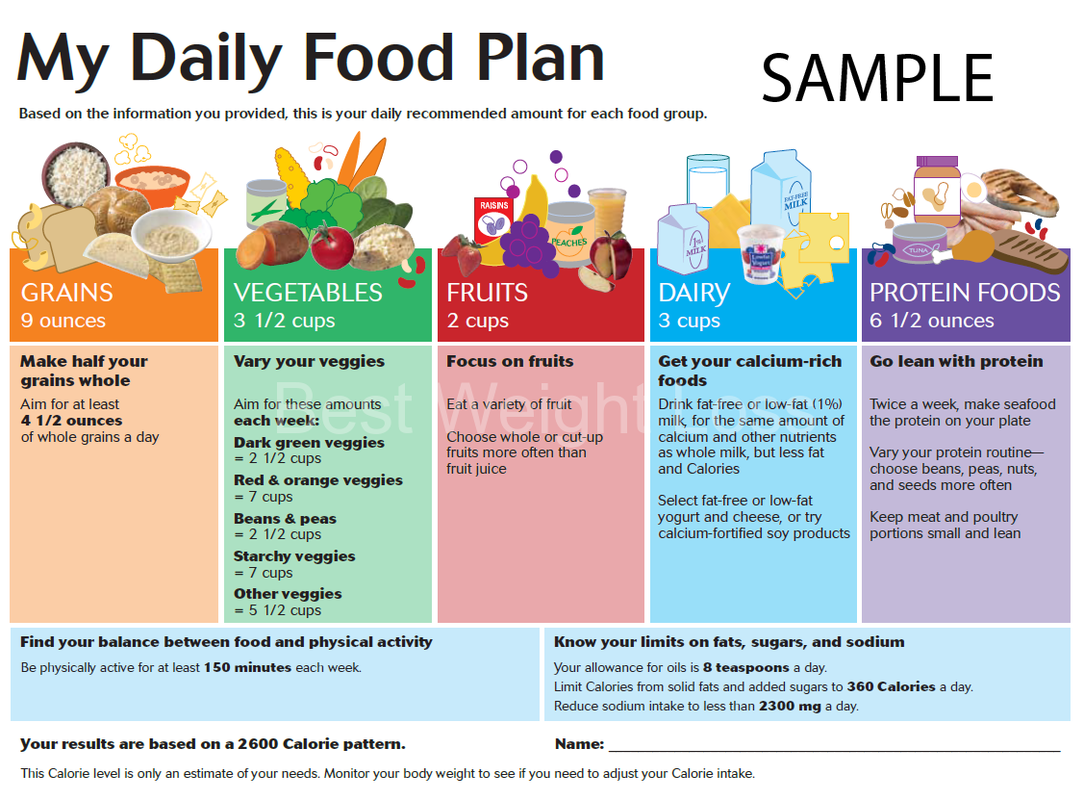 Daily Diet Composition Charts for Carbs, Protein, and Fat